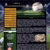 Букмекерские конторы и ставки на спорт – как обыграть букмекера